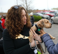 IMG_9101 (i_am_lee_sam) Tags: 2019 care strut for strays charity dog walk skokie il