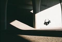 FH010014 (dannondale) Tags: skateboarding california wallride angles 35mm 35mmfilm nikonf2 50mm primelens portra160 kodak filmisnotdead shadow