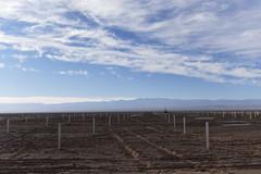 Foto2 (Intendente de Tarapacá) Tags: intendente quezada y ministra de energía participaron en la instalación los 1ros paneles fotovoltaicos granja solar 22052019