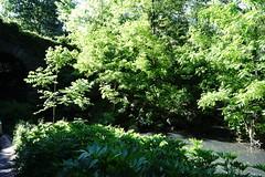 DSC08615 (John KwokNewYorkNY) Tags: bealpha sonyalpha carlzeisslenses zeisscameralens centralpark