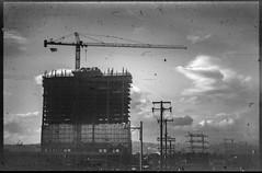 KonicaAutoReflexT3_Kodak2468_D76_test103 (Michael Bartosek) Tags: film 35mm 35mmfilm bw blackandwhite