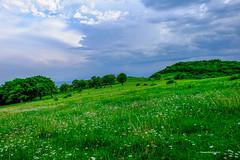 DSCF1853 (george_demetrashvili) Tags: kiketi georgia nature mountain green spring heaven trees beforerain
