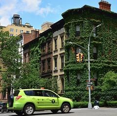 Seeing green (jomondesir) Tags: greenbuilding landscapephotography landscape streetphotography uppereastside manhattan newyorkstreet street newyork nyc ivycoveredbuilding ivy greentaxi green