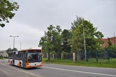 6252 - 66 - 20.05.2019 (VictorSZi) Tags: germany rnv transport publictransport nikon nikond5300 mai may deutschland spring primavara bus autobuz mercedes mercedescitaro mercedesbenz mercedesbenzcitaro