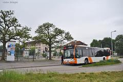 6264 - 66 - 20.05.2019 (3) (VictorSZi) Tags: germany rnv transport publictransport nikon nikond5300 mai may deutschland spring primavara bus autobuz mercedes mercedescitaro mercedesbenz mercedesbenzcitaro