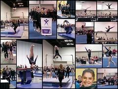 20190519 Nationals (hirschwrites) Tags: gymnastics collage indianapolis anna