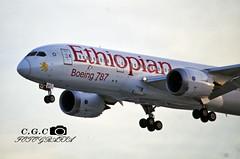 ET-AOT (claudiog.carbone) Tags: ethiopianairlines etaot gru dreamliner b788