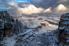 A Grand Snowfall (pdxsafariguy) Tags: arizona winter canyon snow nature landscape rock usa travel scenic cliff erosion southwest desert geology sunrise cold clouds grandcanyon nationalpark fog usnationalpark trees tomschwabel