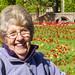 Mum and Tulips