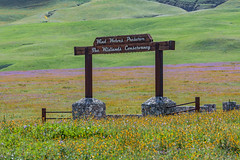 Entrance (davidseibold) Tags: america canonrebelxsi grass jfflickr nature photosbydavid plant postedonflickr sign text unitedstates usa wildflower windwolvespreserve california