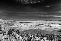 TANZANIA 5 (Nigel Bewley) Tags: tanzania africa wildlife nature wildlifephotography nigelbewley photologo appicoftheweek safari gamedrive sky clouds blackandwhite march march2019 canonef1635mmf28lusm canon5dmkii 830nm infrared digitalinfrared advancedcameraservices blackwhite creativephotography artphotography ngorongoro