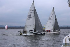 the Bull comes back (antrimboatclub) Tags: spinnaker atlantic challenge antrimboatclub boat sail sailing ireland sixmilewater loughneagh antrimbay antrim