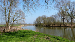 "De Linge in het vroege voorjaar - A little river ""Linge"" in early spring. (Cajaflez) Tags: river rivier linge betuwe spring voorjaar lente fruhling printemps grass gras trees bomen"