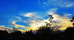 Sunset Scene - April 14th 2019 (Amateur-Hour Photography) Tags: sky skies cloud clouds sunset sunsetsky abcweather1742019