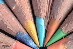 Pastel (Digifred.nl) Tags: macromondays pastel digifred 2019 nederland netherlands nikond500 hmm macro macrophotography closeup kleurpotloden coloredpencils tokina2870 extensionring