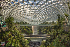 Jewel Changi Airport | Singapore (kenneth chin) Tags: hsbcrainvortex architecture airportcontroltower forest dome changiairport nikon d850 nikkor 16mmf28d fisheye singapore asia jewel yahoo google