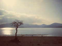 Loch Lomond (RobinMacinnesMartin) Tags: lochlomond scotland scottish scottishloch scottishscenery clouds sunlight sun sunshine