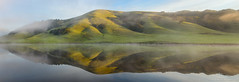 Moment of Reflection (michael ryan photography) Tags: marin marincounty reflection sunrise light greenhills water mirror symmetry abstract california northerncalifornia michaelryanphotography
