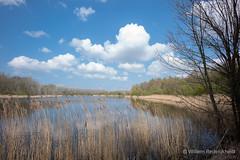 (Guillaume Raisonnable) Tags: m10 got leica carlzeiss europa lelystad natuurparklelystad nederland 18mm flevoland lente seizoenen