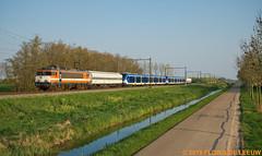 9901+2328-2329_Tricht_150419 (florisdeleeuw) Tags: 9901 rxp railexperts 13486 sng 2338 2339 railadventure remwagens nescasse