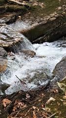 Moose Creek   20190408_134533 (PRS North Star) Tags: streams mountainstreams fishingstreams pristine moosecreek waterfalls