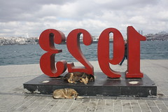 Dog Tired (lazy south's travels) Tags: istanbul turkey turkish statue dog dogs stray sleep sleeping bosphorus river bank urban road street scene
