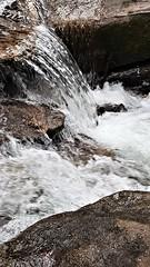 Moose Creek   20190408_134441 (PRS North Star) Tags: streams mountainstreams fishingstreams pristine moosecreek waterfalls