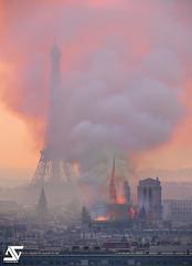 Notre-Dame on fire (A.G. Photographe) Tags: ag agphotographe paris parisien parisian france french français europe capitale d850 sigma 150600 nikon notredame toureiffel eiffeltower cathédrale incendie