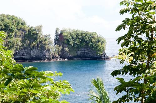 Onomea Bay penninsula / island, Hilo side of Big Island DSC_0839