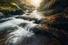 Javy Nájera Fotografía (Javy Nájera) Tags: javynájera larioja otoño puentera sierradelacebollera villosladadecameros cascada naturaleza paisaje río