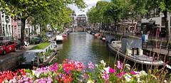 Amsterdam - Canal mit Hausboot + Blumen (monte-leone) Tags: netherland niederlande niederland amsterdam keukenhof käse käseladen käsemarkt rotterdam kerkrade groningen eindhoven denhaag zeeland arnheim maastricht dordrecht grachten nijmegen meppel alkmaar terschellen texel zanseeschans leiden landscape landschaft nationalpark