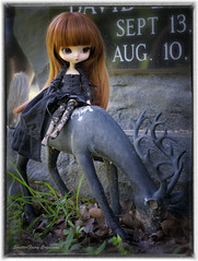 Lenore (twilitize) Tags: adventure adorable art awesome beautiful beauty cool cute cutie dolls doll dolly dollphotography darling daring dal fantasy fun fiction florida floridaphotography girl girls girly pop popular pullip pullips pullipphotography playtime photography