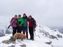 Natasha, Jennifer, David, Brad, Bentley atop EEOR (David R. Crowe) Tags: davidcrowe family outdooractivities people scrambling canmore ab canada