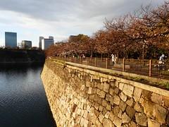 20190401_174008-P1430865 (dudegeoff) Tags: osaka japan 2019 april osakacastle 20190323b0401bkixosakacastle cherryblossoms moat