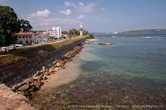 _MG_7582.jpg (Dhammika Heenpella / CWSSIP Images of Sri Lanka) Tags: පහන්කුළුන lighthouse galle කොටුබැම්ම ශ්රීලංකාව historicallandmark srilanka ගාලුකොටුව dhammikaheenpella traveldestination ශ්රීලංකාවේෆොටෝ ධම්මිකහීන්පැල්ල placesofinterest ගාල්ලබලකොටුව gallefort ල්යිට්හවුස් ගාල්ල ශ්රීලංකාවේචායාරූප imagesofsrilanka