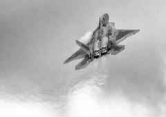 F-22 Raptor (photofitzp) Tags: airshow bw blackandwhite f22 fairford raptor usaf riat 2017
