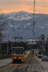 Kamenodelska str. (Rivo 23) Tags: ckd t6a2 tram tatra sofia kamenodelska street bad tracks софия трамвай улица каменоделска трамвайно трасе