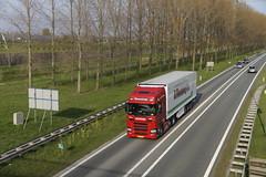 Scania R450 Wezenberg met kenteken 83-BLZ-9 op de A15 in Bemmel 09-04-2019 (marcelwijers) Tags: scania r450 wezenberg met kenteken 83blz9 op de a15 bemmel 09042019 lkw truck trucks camion vrachtwagen vrachtauto nederland niederlande pays bas netherlands