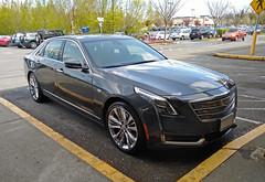 Cadillac CT6 (AJM CCUSA) (AJM STUDIOS) Tags: 2017cadillacct6 cadillacct6platinum cadillac ct6 cadillacct6 cadillacct6picture cadillacct6pictures cadillacct6photo cadillacct6photos cadillacct6pic cadillacct6pics cadillacct6image cadillacct6images luxurycar sedan ajmcarcandidusa ajmcarcandidcollection carcandid carcandidcollection carcandidusa ajmccusa automobile car vehicle carphotos automobilesphotos automobilephotography ajmstudios northamericancars carsofnorthamerica carsoftheunitedstates 2019