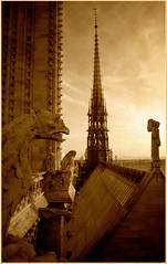 Notre Dame Rooftop and Spire (EdBob) Tags: paris notredame rooftop spire gargoyle france church texture textured tragedy historic history architecture catholic roof fire edmundlowephotography edmundlowe edlowe 2007 travel destination sad remembrance cathedral allmyphotographsare©copyrightedandallrightsreservednoneofthesephotosmaybereproducedandorusedinanyformofpublicationprintortheinternetwithoutmywrittenpermission gothic before beforethefire europe french sepia bw black white monochromatic monochrome vintage classic