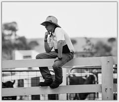 Cowboy (Bear Dale) Tags: cowboy ulladulla southcoast new south wales shoalhaven australia beardale lakeconjola fotoworx milton nsw nikond850 photography framed nature nikon blackwhite bw d850 nikkor afs 70200mm f28e fl ed vr