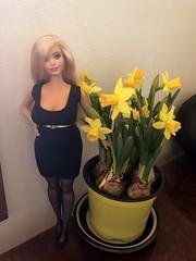 IMG_0366 (pirittamy) Tags: blonde barbie curvy busty fashionistas easter spring