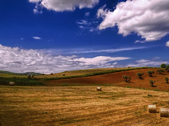 La campagna toscana (2) / The Tuscan countryside (2) (Eugenio GV Costa) Tags: approvato campagna nuvole cielo alberi countryside clouds sky trees outside