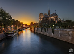 Glow | Notre-Dame de Paris (kenneth chin) Tags: nikon d810 nikkor 1424f28g paris europe city cathedral yahoo google glow seine notredame france