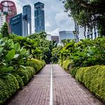 2019 - Singapore - Chinatown Duxton Plain Park thumbnail