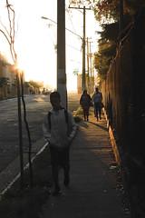 Todos os dias (ericristianoo) Tags: sol sun rise down sundown beaultiful great brazil sp find cast canon cell