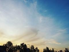 Amanece  y paseamos... Eso que se aprecia en el cielo, serán almas errantes??? . #zaragoza #positivity #buongiorno #bomdía #gutentag #goedemorgen#words#soul#nubes #buenosdias#positivity #goodmorning #bonjour #artist #heaven #fotografia a #photography #art (egc2607) Tags: photographie words gutentag clouds igerszgz inamore buongiorno sun positividade photooftheday goedemorgen goodmorning bomdía artphoto bonjour soul photography zaragozapaseando sky nubes instazaragoza artist cielo soleil heaven zaragoza fotografia positivity instszaragoza buenosdias