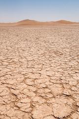 Desertic dryness (Arnø N°XX) Tags: désert dune sand morocco maroc sécheresse