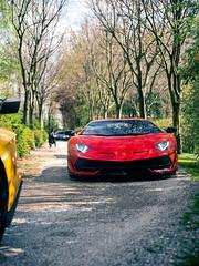Red Car (Mattia Manzini Photography) Tags: carsandcoffee ferrari f12 tdf f12tdf laferrari enzo challengestradale lamborghini aventador svj supercar supercars cars car carspotting nikon d750 v12 v8 automotive automobili auto automobile italy italia red