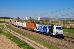 185 663 (139 310) Tags: np tfz österreich evu 185 kbs tec zugnummer 185663 kbs150 lokomotion tec41855